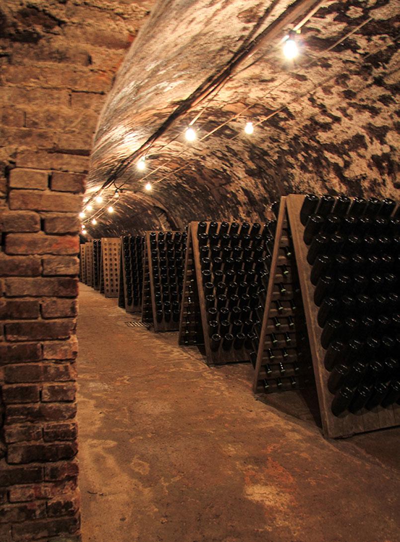 visite de cave en champagne à Epernay Lenique